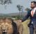 Jas Pria yang Mempesona seekor Singa